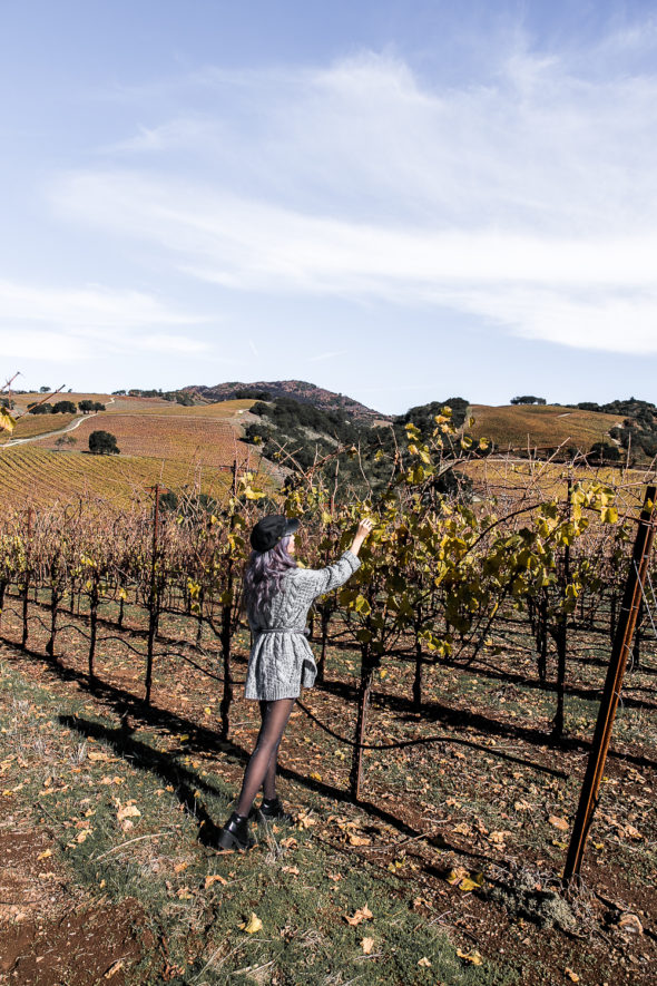 Weekend Getaway to Sonoma Valley | Atsuna Matsui